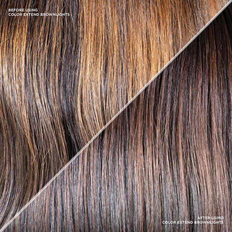 Color Extend Brownlights Shampoo + Conditioner Duo