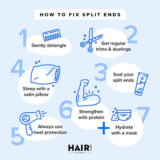 split ends illust infographic