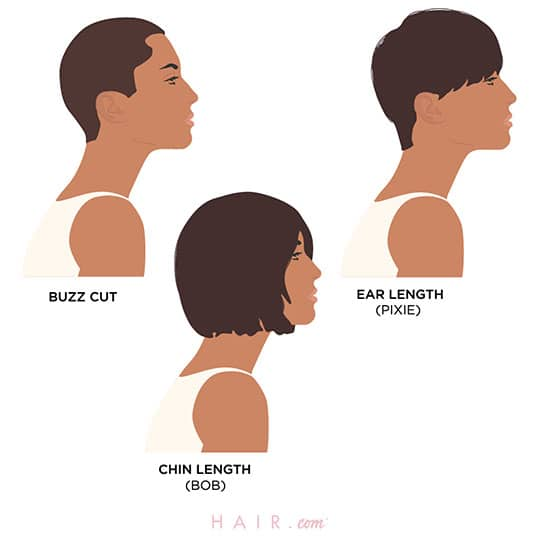 three women with different hair length chart
