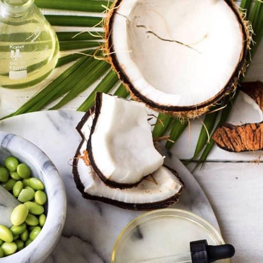 Feed Hair Coconut