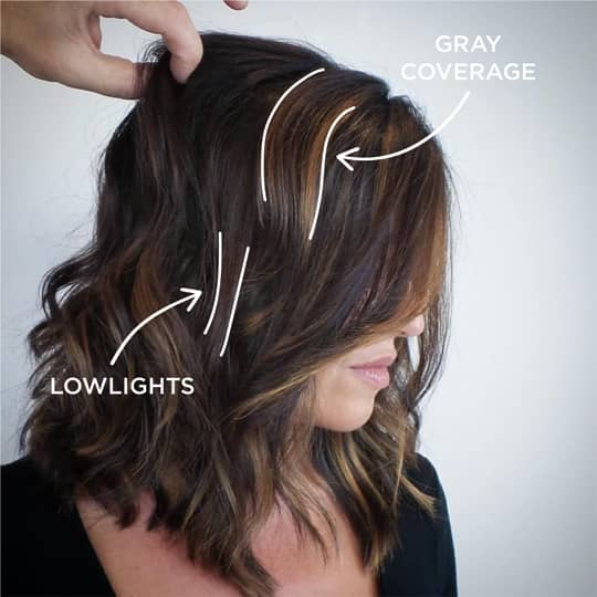 Popular hair color techniques, low lights and gray coverage