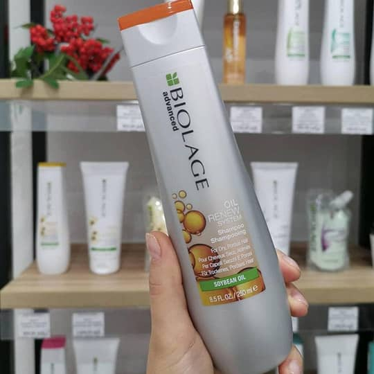 biolage oil renew shampoo